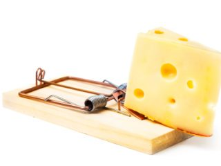 Mouse trap with cheese isolated on white